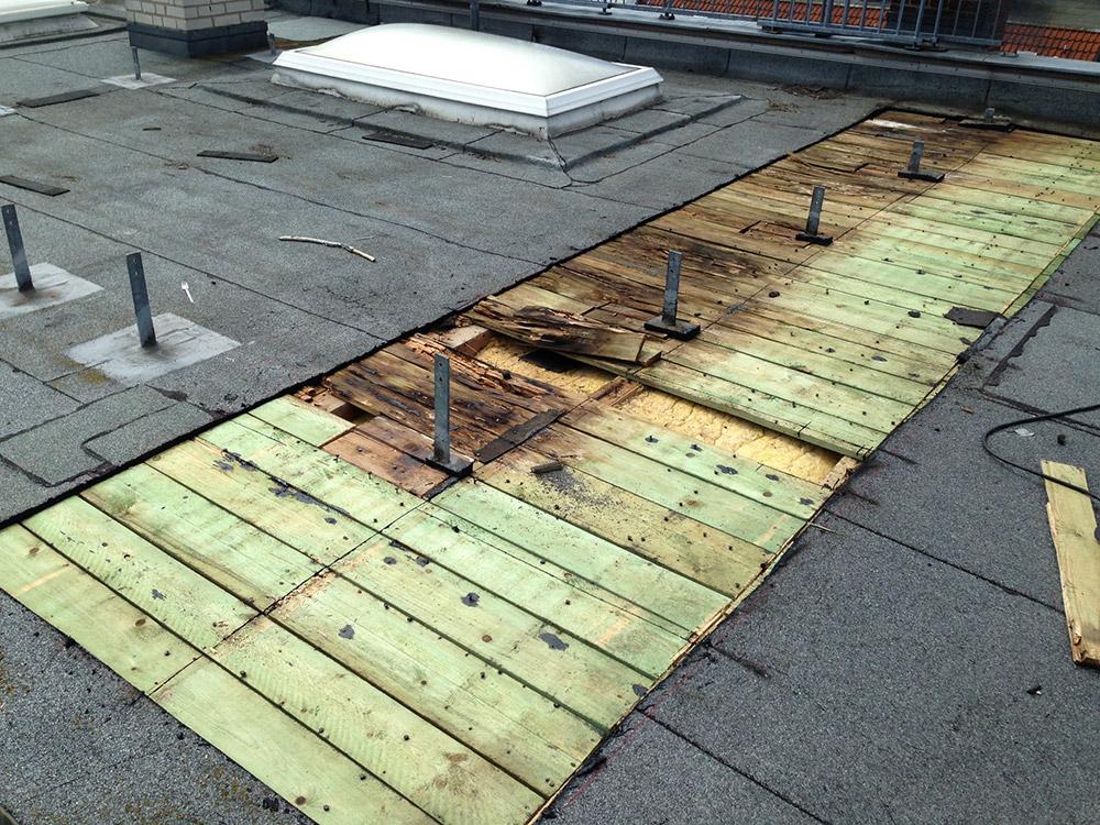 Pilzbefall auf Grund von Verschattungen duch eine Dachterrasse
